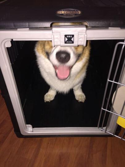 爱丽思宠物箱手提笼 宠物折叠航空箱 猫狗托运箱 可折叠箱体 金属笼 FC-670 黑色 晒单图