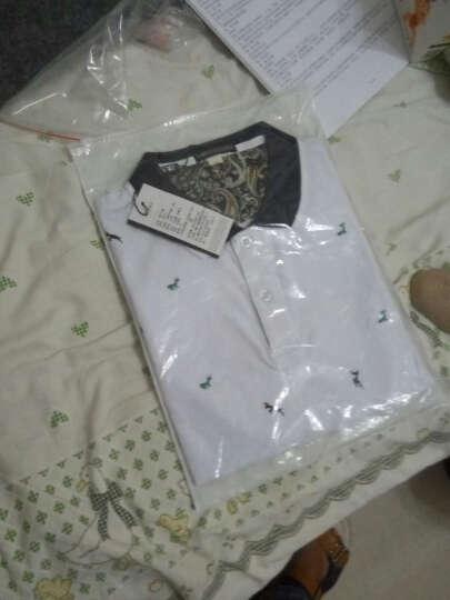 汇龙海(HUILONGHAI)新款男装短袖T恤男2019夏季体恤POLO衫 黑色 4XL 晒单图