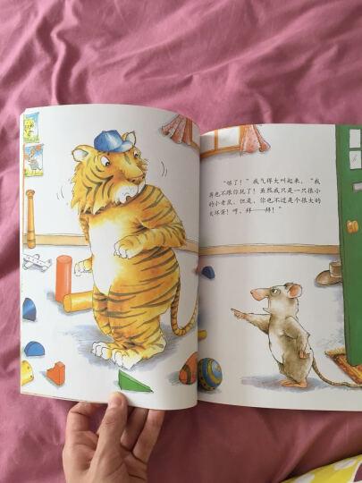 小老鼠和大老虎 晒单图