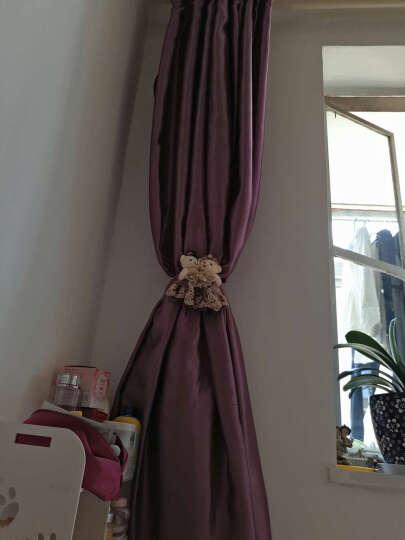 俏亿家(QiaoYiJia) 欧式卡通小熊窗帘扣窗帘绑带 韩国可爱创意窗帘夹窗帘扣环花一对 一对-紫色 晒单图