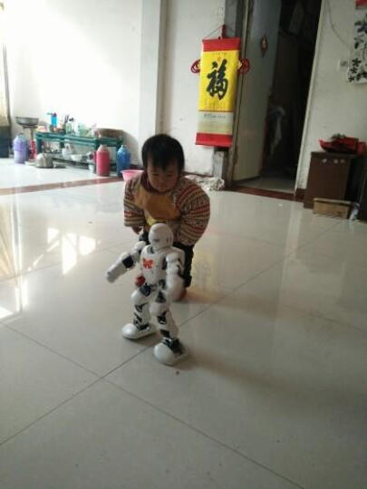 优必选阿尔法1P?陪伴人工智能机器人学习机机器人3-6-12岁编程教育儿童机器人早教机 Alpha 1P 晒单图