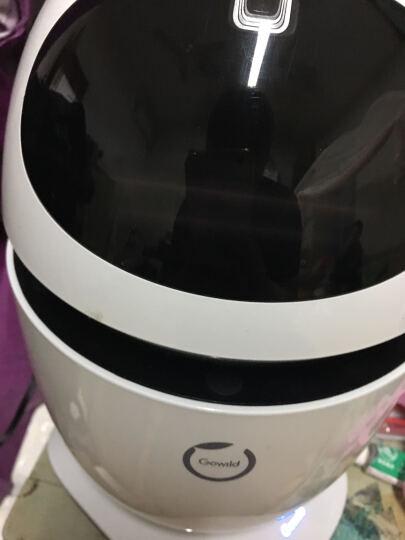 狗尾草公子小白8核版智能机器人儿童早教学习机电动玩具 语音对话互动教育遥控机器人智能玩具 2代8核版-牛奶白 晒单图