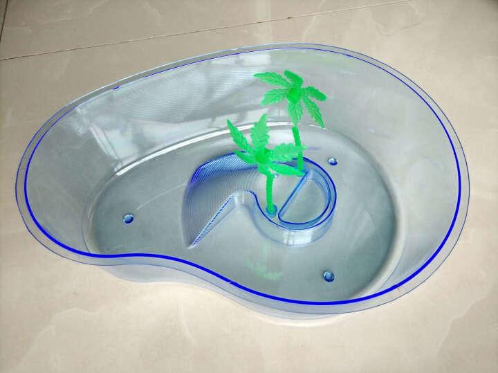 淘歌 TG 乌龟缸带晒台 开放式小型宠物饲养盒子 巴西龟盆 大号 晒单图