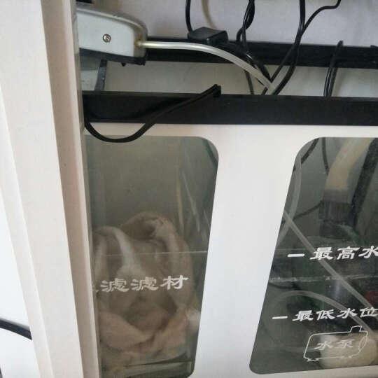 (免费入户)(SUNSUN) 森森 水族箱底过滤金鱼缸生态缸中型超白圆弧玻璃鱼缸 酒红色 H1C高清圆弧1.2*43宽底滤 晒单图