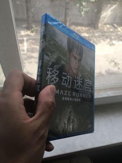 移动迷宫(蓝光碟 BD50) 晒单图