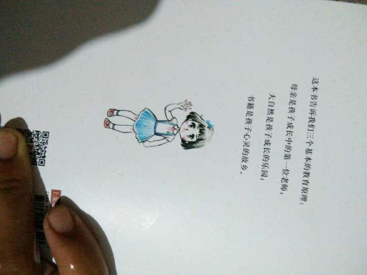 白马可心的星空(中国版《窗边的小豆豆》) 晒单图
