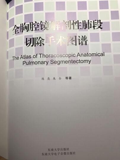 全胸腔镜解剖性肺段切除手术图谱 晒单图