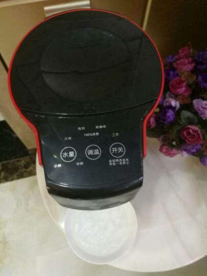 JPENR 即热式电热水壶 速热电热水瓶 家用净化过滤除氯温控快速烧水壶开水瓶 即热式电热水壶(白色) 晒单图