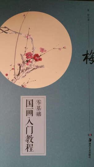 国画入门 千姿百态的梅兰竹菊 晒单图