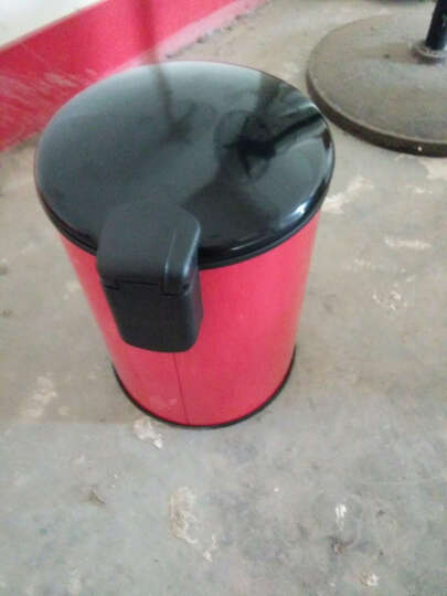 巧博士(QIAOBOSHI) 不锈钢垃圾桶脚踏式缓降家用创意可爱欧式卧室卫生间厨房客厅静音有带盖 8L-高档-黑色 晒单图