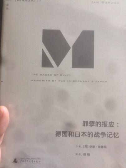 理想国译丛012:罪孽的报应 晒单图