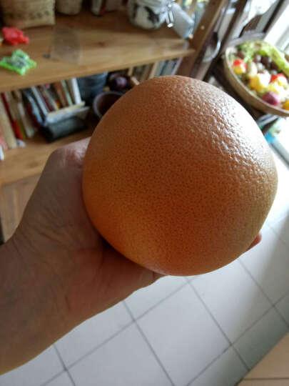 原泽味 南非进口红心西柚 8个 单果250-300g 新鲜葡萄柚 晒单图