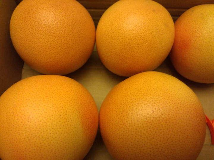 花果鲜 南非进口红西柚6个装 总重约1.8kg 晒单图