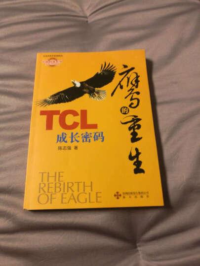 满88包邮 正版图书 鹰的重生:TCL成长密码  晒单图