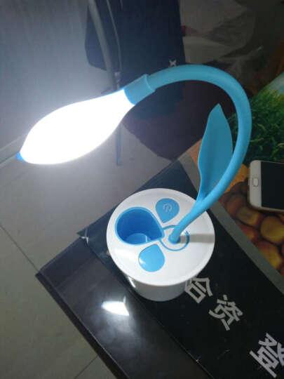 创安达 LED台灯 带笔筒可爱卡通充电小台灯 阅读led台灯 学生宿舍床头灯 天蓝色 晒单图