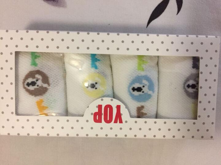 儿童袜子男童孩子非纯棉夏薄棉网眼透气船袜短筒包邮4双礼盒装 男童小汽车包邮4双装 9-12岁(30-33鞋码) 晒单图