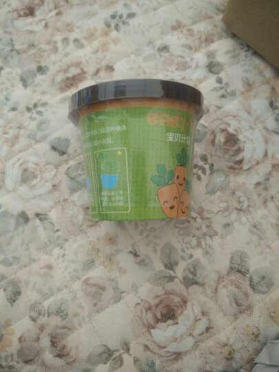 ECOEY 绿植盆栽 儿童动手创意迷你蔬菜水果DIY种植玩具宝贝计划小盆栽 宝贝计划-菊花 晒单图