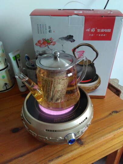 心好(xinhao)电陶炉茶炉家用迷你静音煮茶器大火力套装DTL501 金色+玻璃壶 晒单图