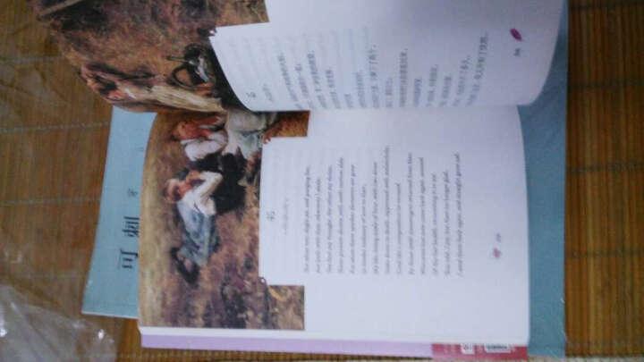 我们,我们的歌唱与爱情:十四行诗集(双语美绘 图文典藏) 晒单图