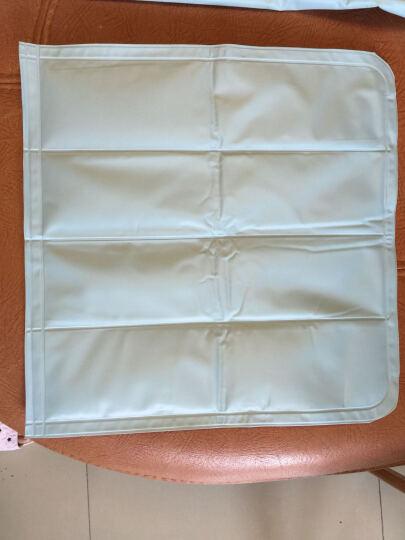 上院冰垫床垫凝胶垫 第3代散热垫冰枕 学生宿舍新款夏季清凉凉垫坐垫 浅蓝色 90*90cm单人大号床垫送冰枕 晒单图