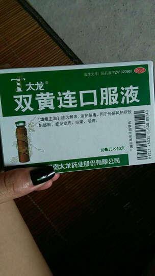 太龙 双黄连口服液 10支 【2盒装】 晒单图