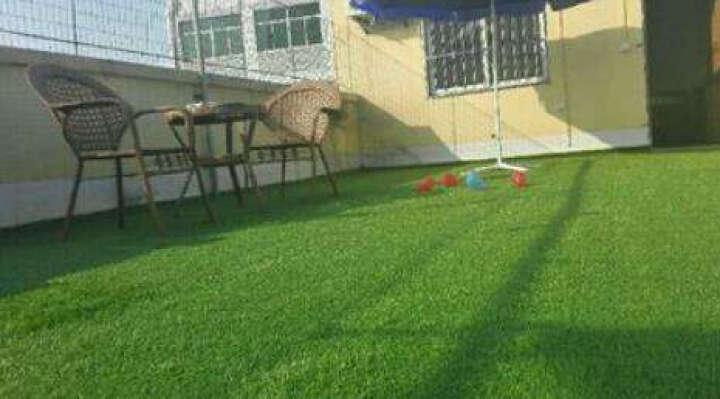 迪茵地毯 塑料假草皮人造仿真草坪 幼儿园人工工程假草坪室内橱窗飘窗阳台地毯房顶遮阳 翠绿色10mm 晒单图