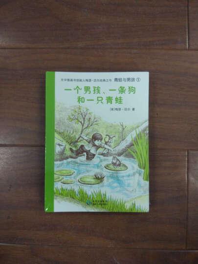 男孩与青蛙(全6册) 晒单图
