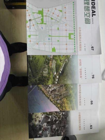 理想空间:小城镇规划与策划(No.63) 晒单图
