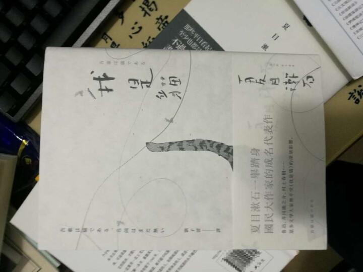 夏目漱石經典小說套書 (2冊合售):我是貓\心 晒单图