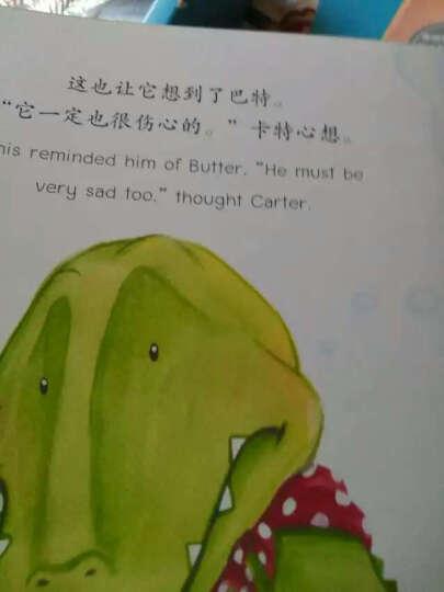 鳄鱼宝宝卡特阳光绘本(双语版 套装共4册) 晒单图
