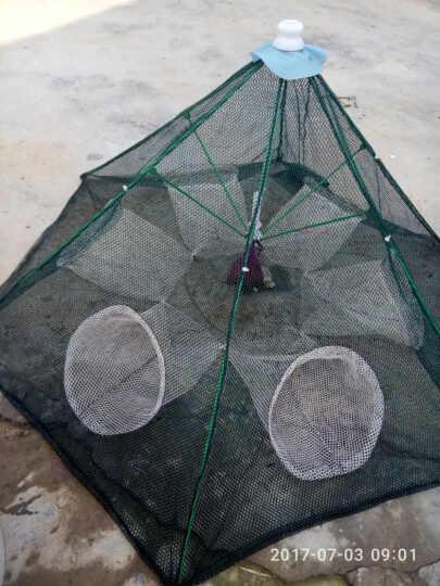 渔网鱼网全自动伞型虾笼捕鱼笼网手抛网捕虾蟹网抓鱼捕鱼工具 白进口6孔+5包饵 晒单图