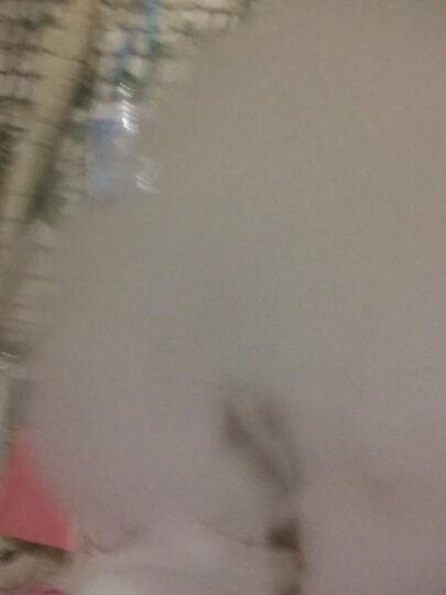 德辉独立者电子烟套装大烟雾迷你调压盒子80W温控蒸汽烟产品送烟油 黑色礼品装1支装 晒单图