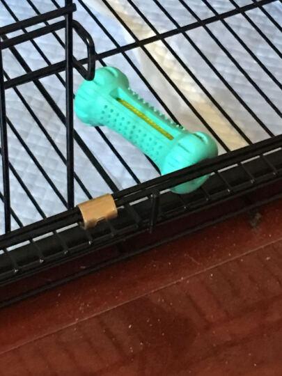 红脚丫狗玩具 牙线洁齿哑铃 橡胶宠物玩具 拉不拉多狗狗耐咬片片球  狗洁牙玩具 天蓝色 小号(规格:10.3cm) 晒单图