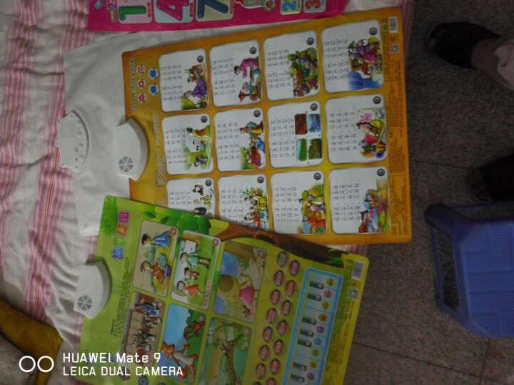 乐乐鱼(leleyu) 有声挂图识字卡益智启智启蒙拼音早教机点读故事机小孩婴幼儿儿童玩具 4张(认数字+英文+日常用品+生肖) 晒单图