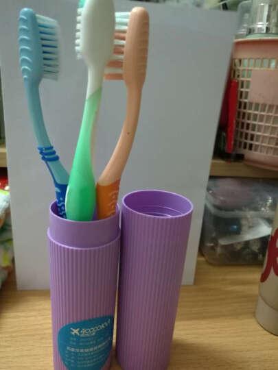 四万公里 旅行男女漱口杯牙刷杯出差便携牙膏牙刷收纳盒多功能洗漱牙具盒 SW2001 小号 多彩紫色(2件起售) 晒单图