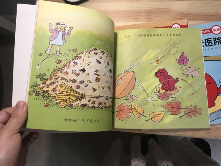 万万没想到:德国经典儿童科普翻翻书第一辑(套装共5册) 晒单图