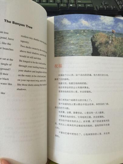 4本任选生如夏花+纳兰词+人一生要读的古典诗词+诗经泰戈尔诗选中英双语新月集飞鸟集泰戈尔诗 晒单图