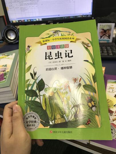 语文新课标 小学生必读丛书 无障碍阅读 彩绘注音版:昆虫记 晒单图
