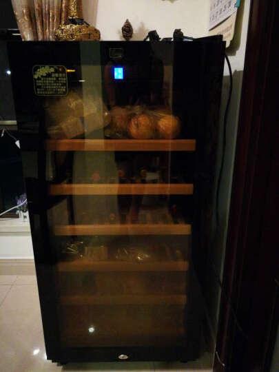 蒂朵(Diduo) JC-95恒温红酒柜压缩机葡萄酒柜冰箱茶叶饮料储藏保鲜冷藏恒湿雪茄柜子冰柜冰吧 红木纹A型 晒单图