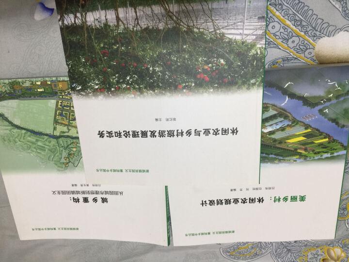 新城镇田园主义 重构城乡中国丛书:休闲农业与乡村旅游发展理论和实务 晒单图