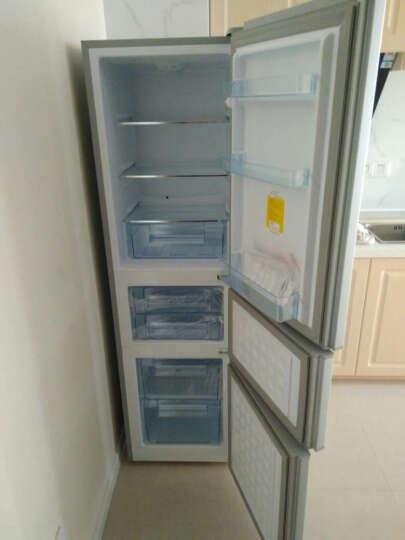 上菱 (SHANGLING)BCD-211THC 211升三门冰箱 家用冷藏冷冻电冰箱三门 晒单图