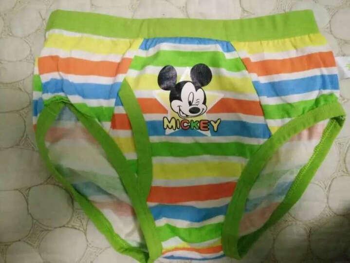 迪士尼宝宝内裤儿童内裤三角2条装草绿+蔚蓝彩条3464230H80 晒单图