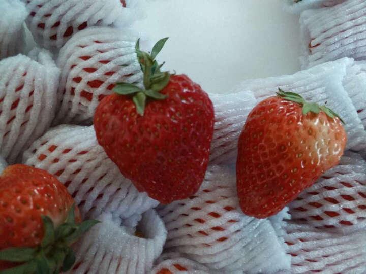 【顺丰空运】【买一份赠一份】美果汇 辽宁丹东99红颜奶油草莓750g 新鲜元宵节水果 搭配酸奶好吃 晒单图