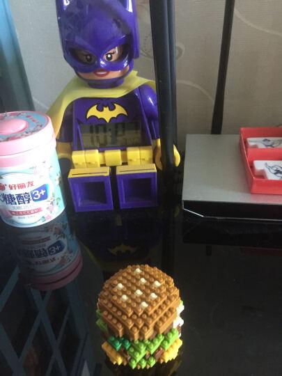 小颗粒拼装钻石积木微型拼插益智休闲玩具我的世界麦当劳汉堡薯条寿司套餐组装收藏新年创意礼物 寿司B套餐(加展示盒) 晒单图