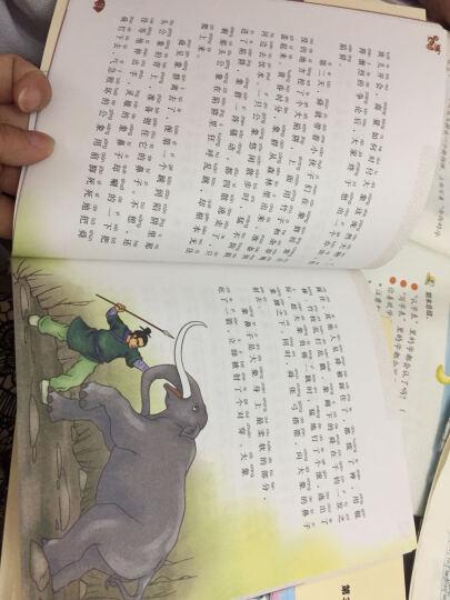 没头脑和不高兴 全套6册注音版 丁丁探案记  小学生课外阅读推荐书籍 中国经典幽默儿童文学任溶溶作品 晒单图