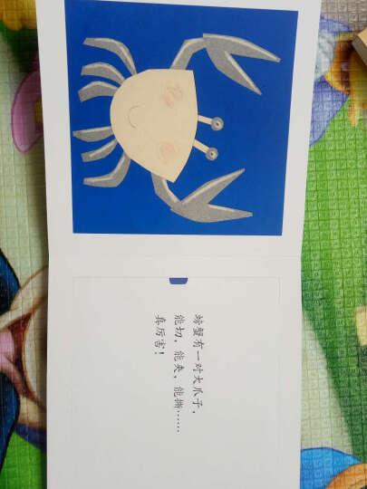 意大利原版引进左右脑训练工具书(套装共4册) 晒单图