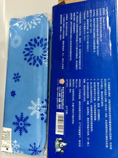 艾暖冰垫 汽车凉坐垫  椅垫冰床垫凝胶冰凉枕速冷医用冰袋冷敷消肿  夏季消暑降温神器 冰床垫三件套90*145cm(喜洋洋) 晒单图