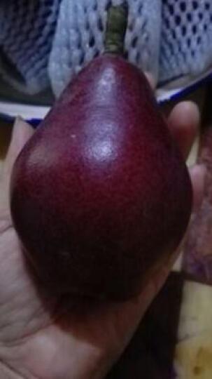 闫老碎 梨子红皮梨秦岭红啤梨 新鲜采摘水果 水果冰淇淋  2.5kg 晒单图