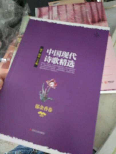 中国现代诗歌精选:郁金香卷 晒单图