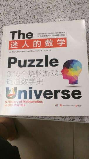 包邮 迷人的数学 大脑游戏天书作者伊凡·莫斯科维奇新作 315个经典烧脑游戏 书籍 晒单图